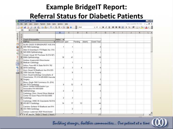 Example BridgeIT Report: