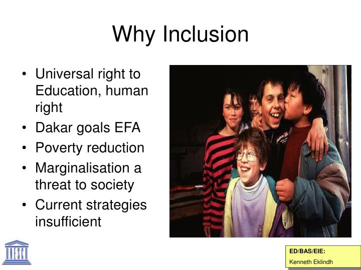 why inclusion n.