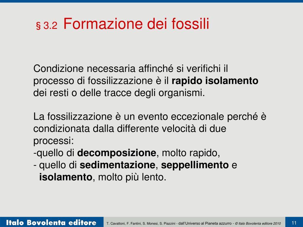 Datazione fossile relativa o assoluta