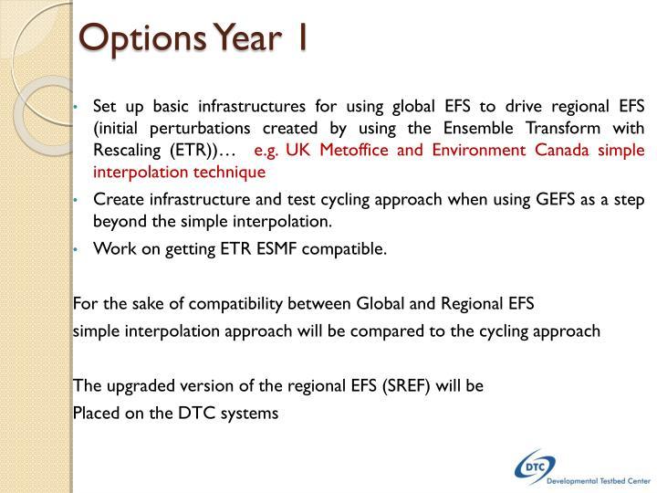 Options Year 1