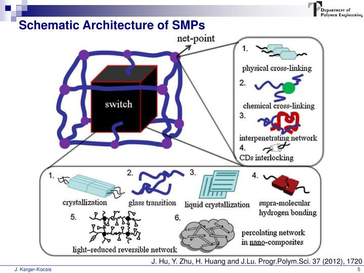 Schematic Architecture of SMPs