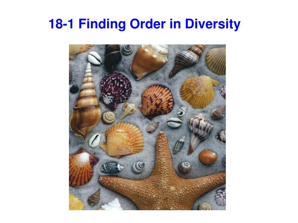 PPT - 18-1 Finding Order in Diversity PowerPoint ...