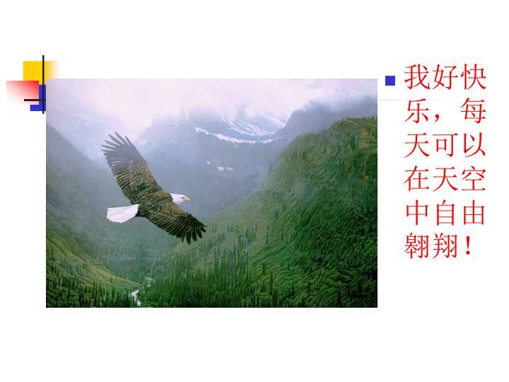 我好快乐,每天可以在天空中自由翱翔!
