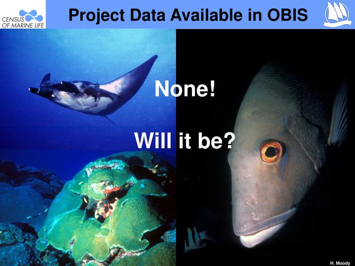 Project Data Available in OBIS