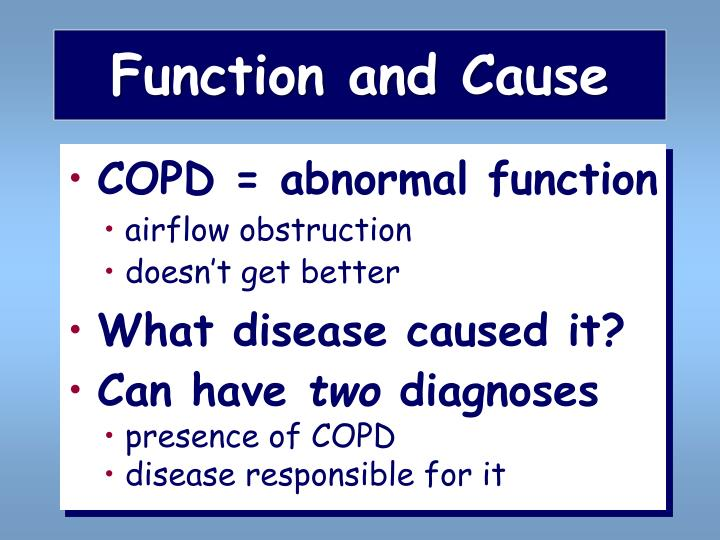 Function and Cause