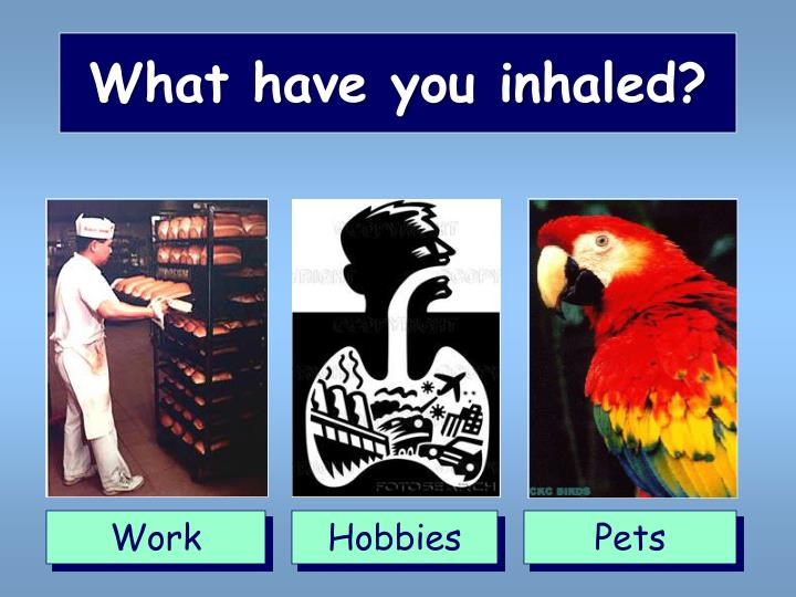 What have you inhaled?