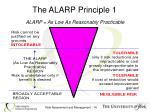 the alarp principle 1