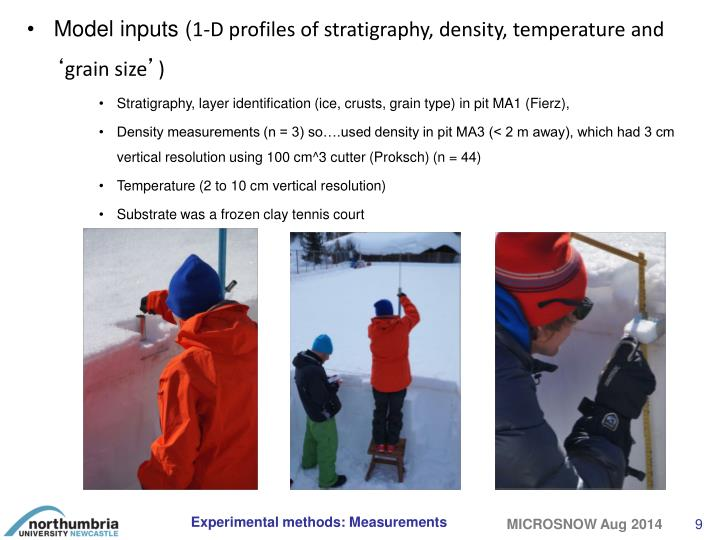 Model inputs (