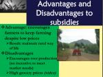 advantages and disadvantages to subsidies