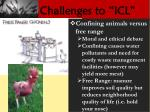 challenges to icl1