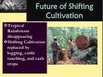 future of shifting cultivation