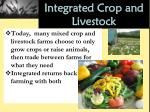 integrated crop and livestock