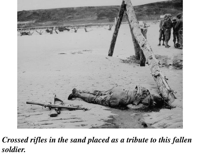 Crossed rifles in the sand placed as a tribute to this fallen soldier.