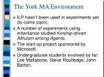 the york ma environment2