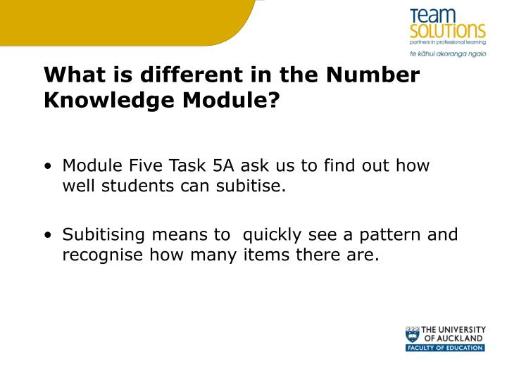 What is different in the Number Knowledge Module?