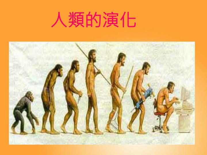 人類的演化