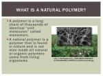what is a natural polymer