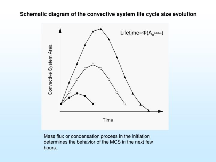 Schematic diagram of the convective system life cycle size evolution