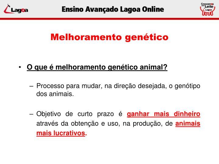 Melhoramento gen tico