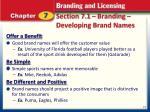 section 7 1 branding developing brand names1