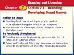 section 7 1 branding developing brand names2