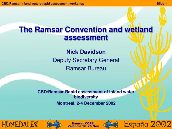the ramsar convention and wetland assessment n.