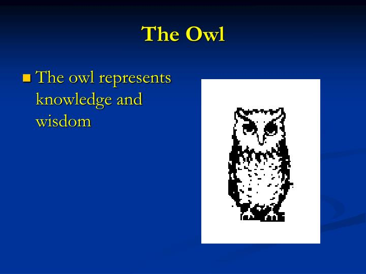 The owl represents knowledge and wisdom