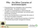 pas the mine canaries of land seascapes