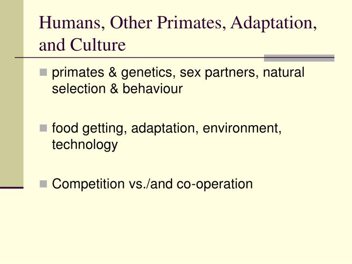 humans and other primates 10 comparisons between chimps and humans kate all humans can produce fertile this makes it easier to see where other humans are.