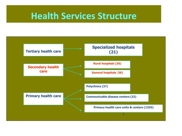 Health services structure