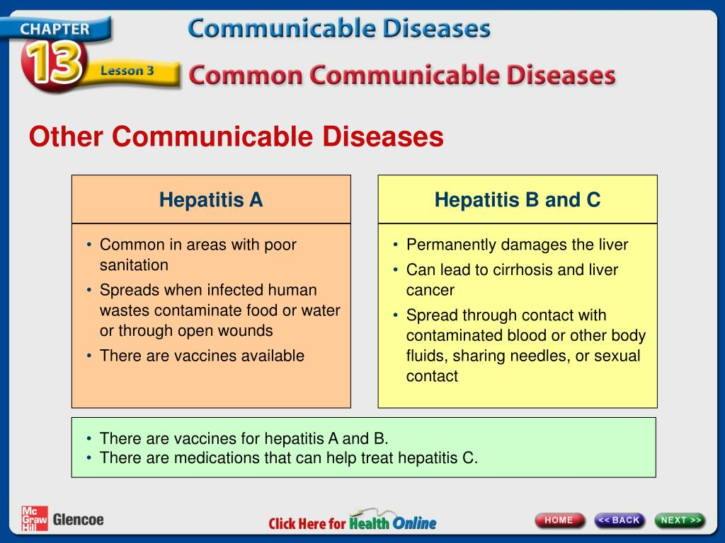 PPT - Chapter 13 Communicable Diseases PowerPoint ...