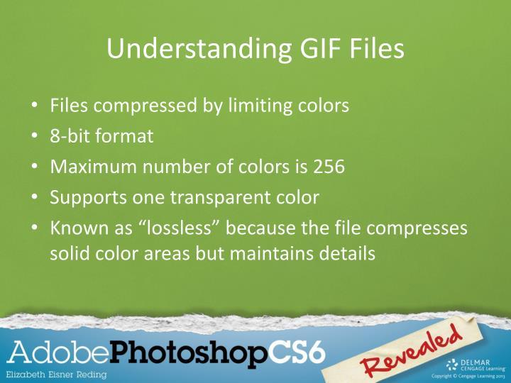 Understanding GIF Files