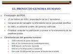 el proyecto genoma humano1