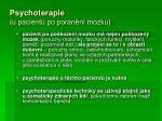 psychoterapie u pacient po poran n mozku