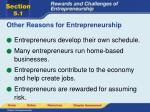 other reasons for entrepreneurship