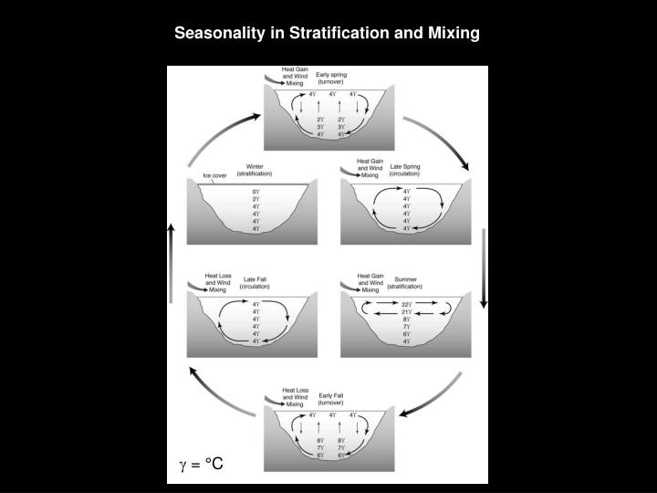 Seasonality in Stratification and Mixing