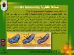 innate immunity2