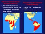 african trypanosomiasis sleeping sickness