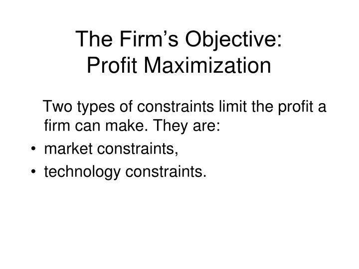 The Firm's Objective:
