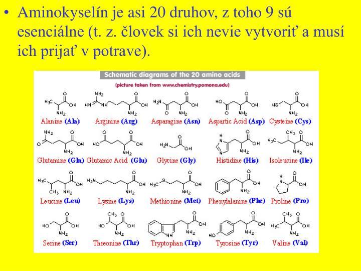 Aminokyselín je asi 20 druhov, z toho 9 sú esenciálne (t. z. človek si ich nevie vytvoriť a musí ich prijať v potrave).
