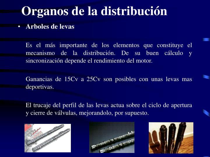Organos de la distribución