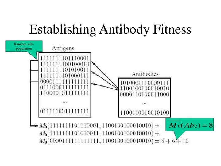 Establishing Antibody Fitness
