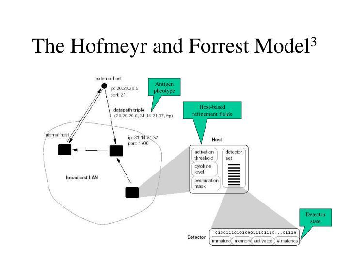The Hofmeyr and Forrest Model