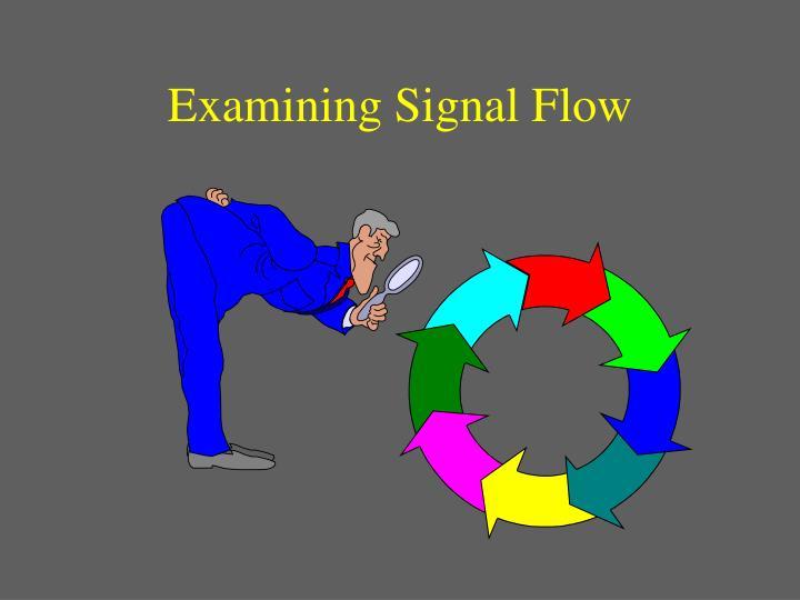 Examining Signal Flow