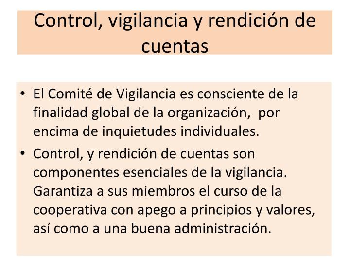 Control, vigilancia y rendición de cuentas