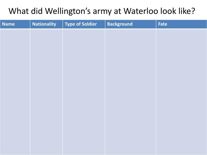 What did Wellington's army at Waterloo look like?