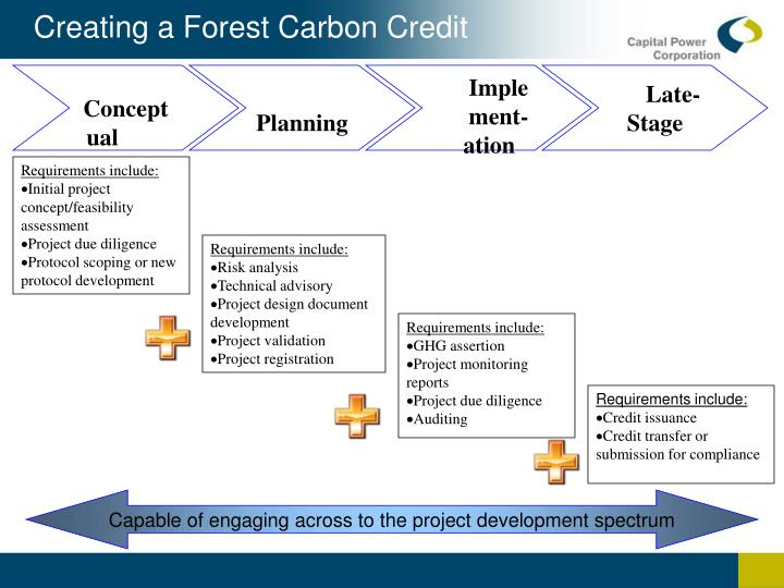 Creating a Forest Carbon Credit