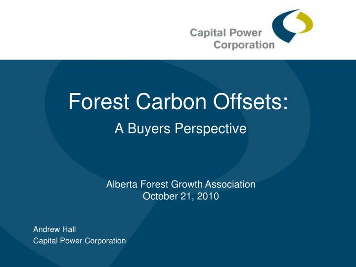 Forest carbon offsets a buyers perspective