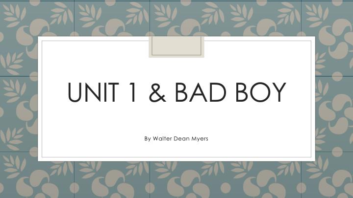 unit 1 bad boy n.