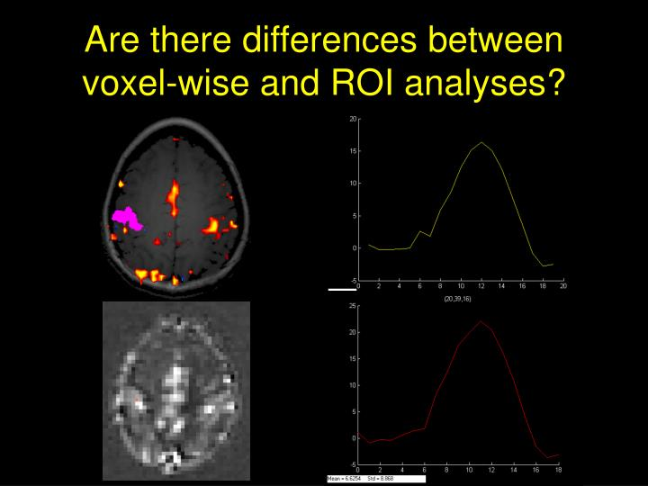 Are there differences between voxel-wise and ROI analyses?